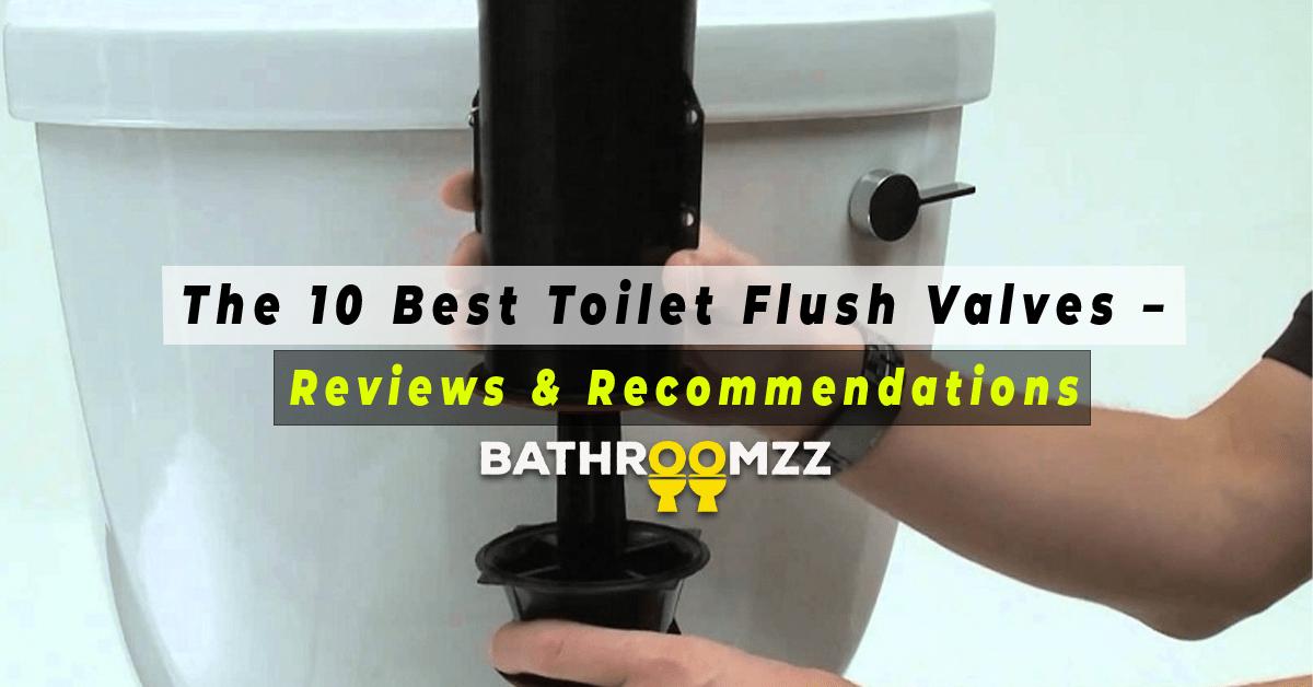 The 10 Best Toilet Flush Valves - Reviews & Recommendation