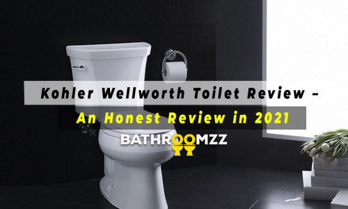 Kohler Wellworth Toilet Review - An Honest Review in 2021