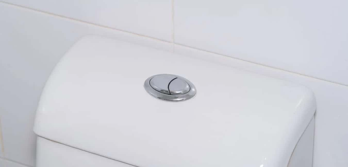 Are Dual Flush Toilets Worth it